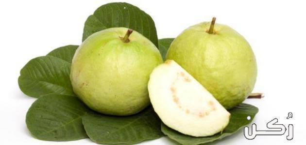فوائد أوراق وثمار الجوافة واستخداماتها الطبية