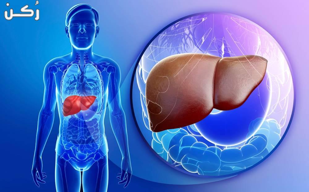 تضخم الكبد – الأسباب و الأعراض وطرق العلاج