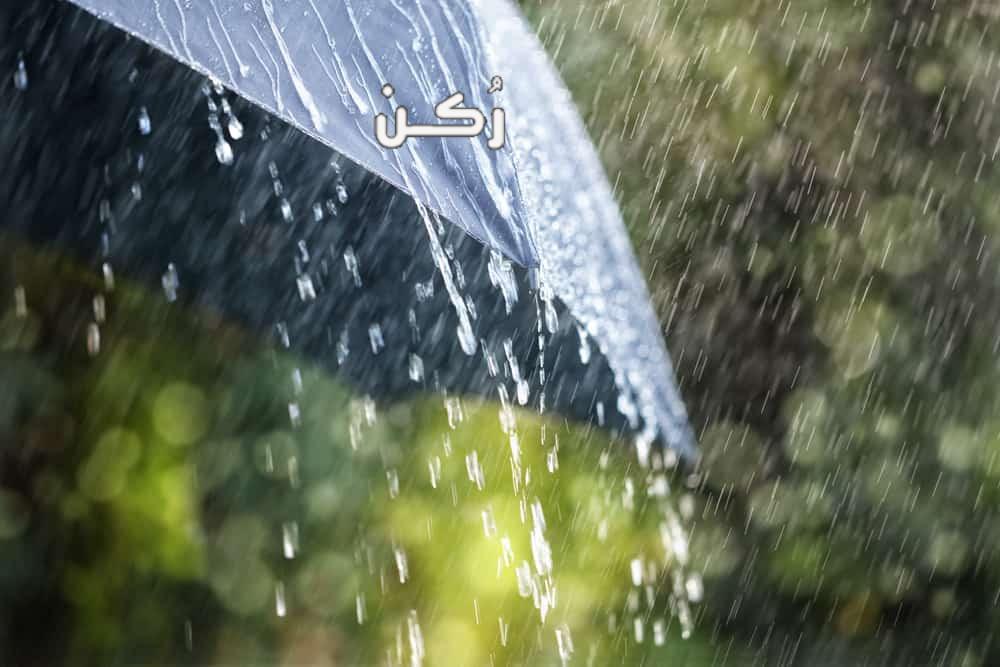 تفسير حلم رؤية المطر الغزير في المنام للعزباء والمتزوجة
