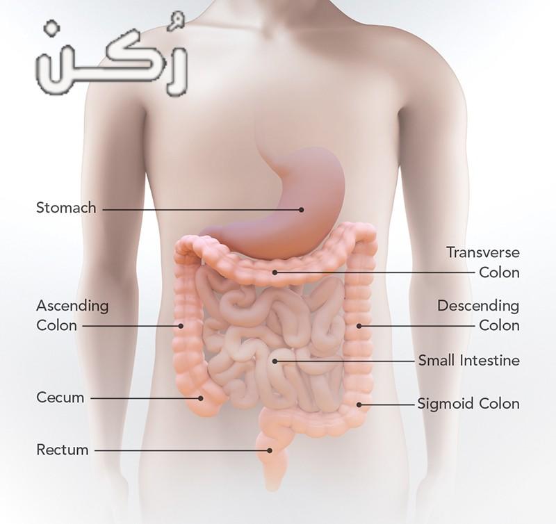 علاج التهاب القولون وأعراضه وطرق الوقاية منه