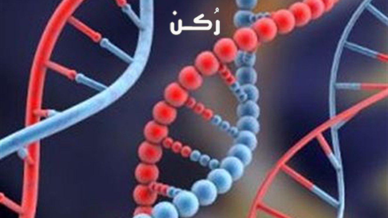 أشهر الأمراض الوراثية نتيجة زواج الأقارب وأسبابها وكيفية الوقاية منها