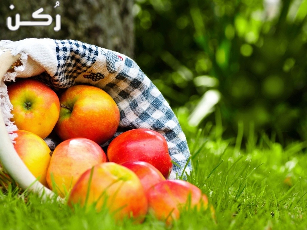 تفسير رؤية التفاح او اني آكل تفاحة في المنام