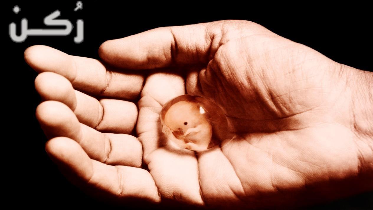 تفسير رؤية الإجهاض أو إسقاط الجنين في المنام