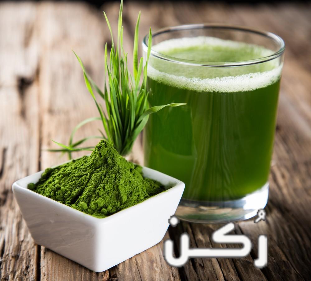 فوائد عصير وحبوب البرسيم للبشرة والشعر وصحة الجسم