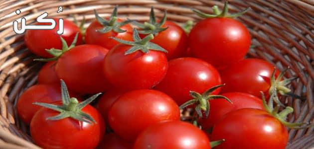 حلم رؤية الطماطم في المنام