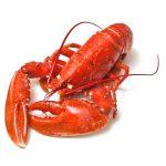فوائد سرطانات البحر الطبية والغذائية وأنواعه
