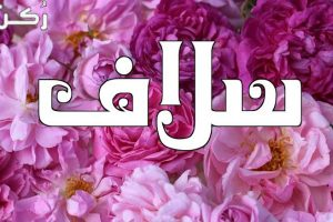 معنى اسم سلاف في اللغة العربية وصفات حاملة الاسم