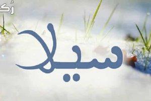 معنى اسم سيلا في اللغة العربية وصفات حاملة الاسم