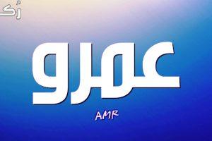 معنى اسم عمرو في اللغة العربية وصفات حامل الاسم