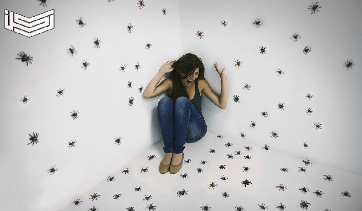 تفسير حلم رؤية الحشرات في المنام للرجل والعزباء والمتزوجة