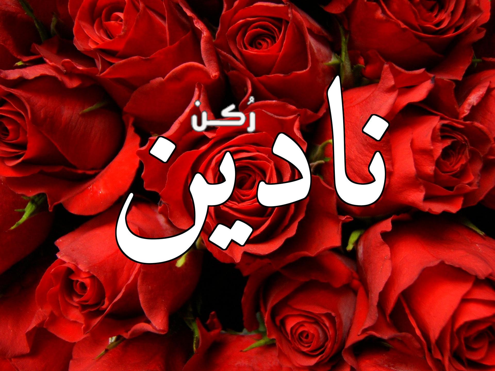 معنى اسم نادين Nadine في اللغة العربية وهل يجوز التسمي به أم لا؟