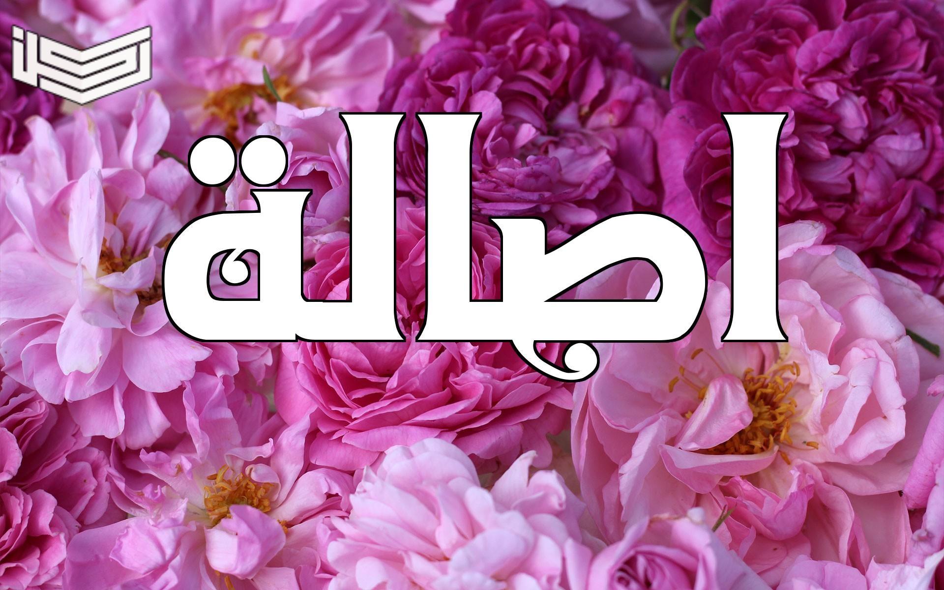 معنى اسم أصالة في المعجم العربي علم النفس