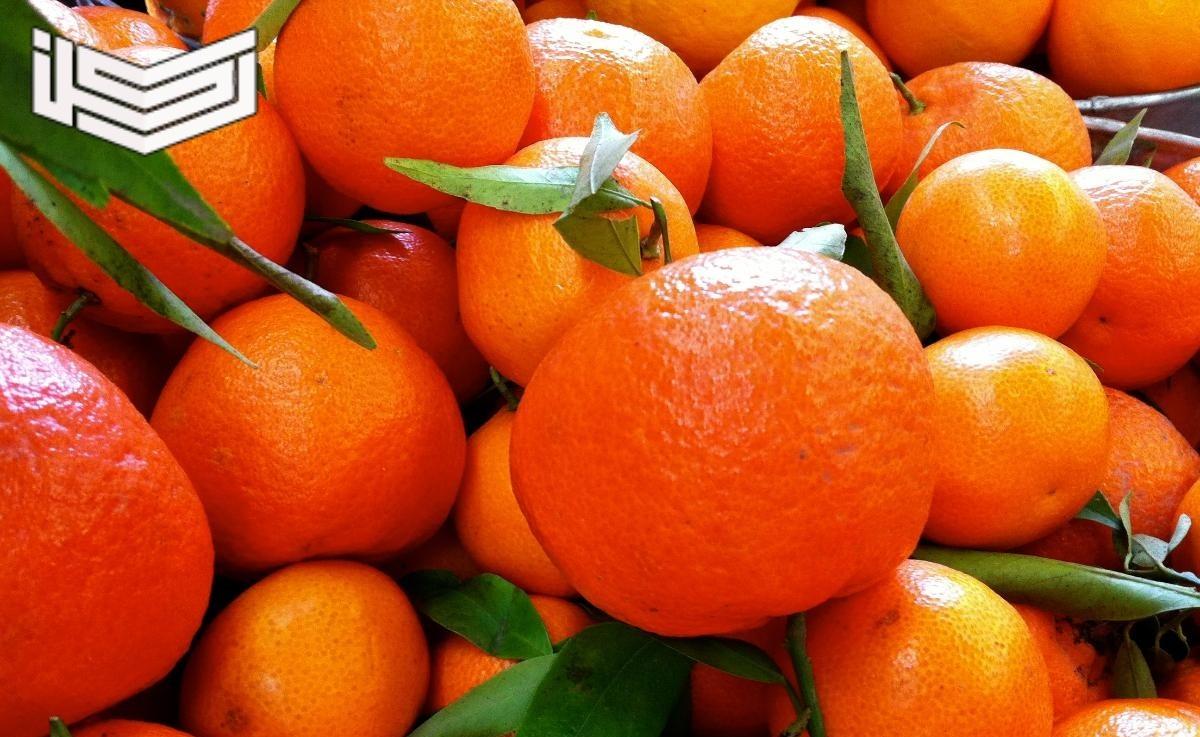فوائد رائعة لفاكهة اليوسفي للبشرة والحامل وصحة القلب