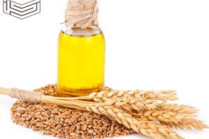 فوائد زيت جنين القمح للصحة العامة والبشرة والتخسيس