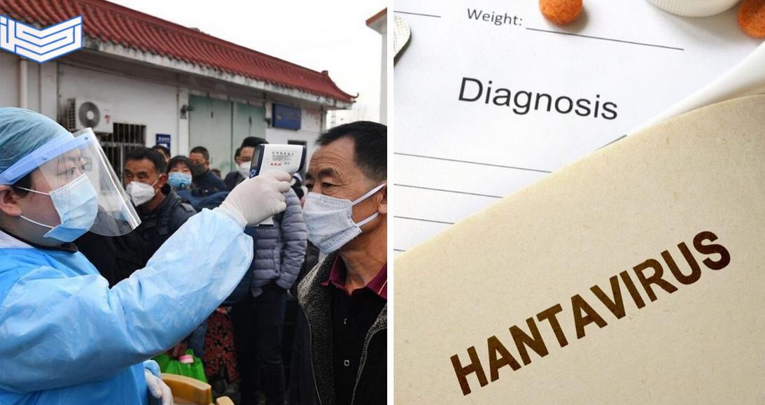 فيروس هانتا hantavirus القاتل الذي ظهر مؤخراً في الصين