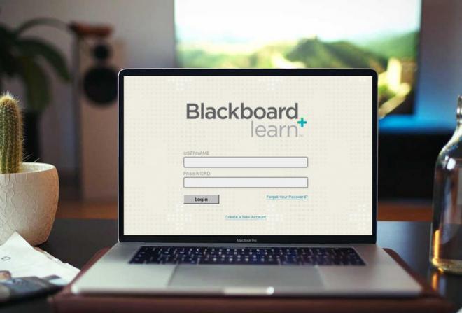 نظام بلاك بورد جامعة نورة blackboard 1441
