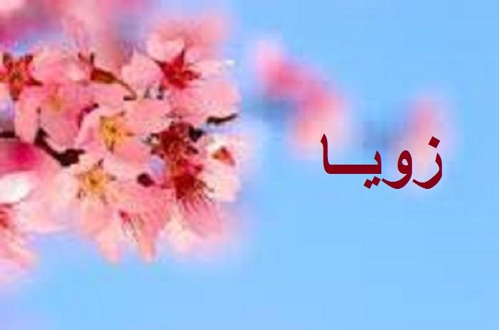 معنى اسم زويا وصفات حاملة الاسم وحكمه في الإسلام