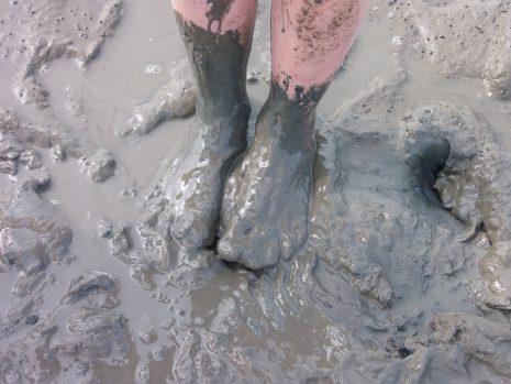 تفسير رؤية المشي في الوحل في المنام لابن شاهين